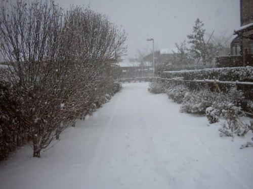 1220積雪